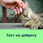 Тест на доброту