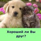 Хороший ли Вы друг?