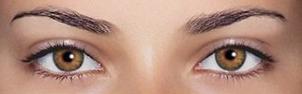 янтарные глаза фото