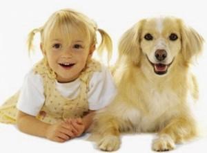 """Тест """"Какая Вы собака?"""""""